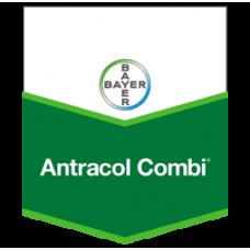 ANTRACOL COMBİ WP 76 400 gr - MANTAR İLACI (FUNGUSİT)