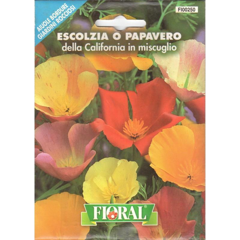 Acem Lalesi Çiçek Tohumu - Paket