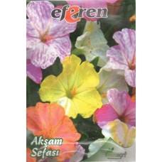 Akşam Sefası Çiçeği Tohumu - 10 adet - Paket