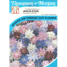 Aquilegia Çiçeği Tohumu - 50 ad - Paket