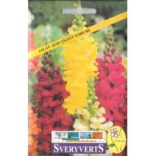 Aslan Ağzı Çiçeği Tohumu - Paket