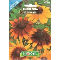 Güneş Şapkası Çiçek Tohumu - Paket