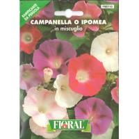 Gündüz Sefası Çiçek Tohumu - Paket