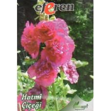Hatmi (Gül Hatmi) Çiçeği Tohumu - Paket