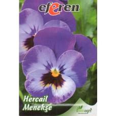 Hercail Menekşe Çiçeği Tohumu - 25 adet - Paket