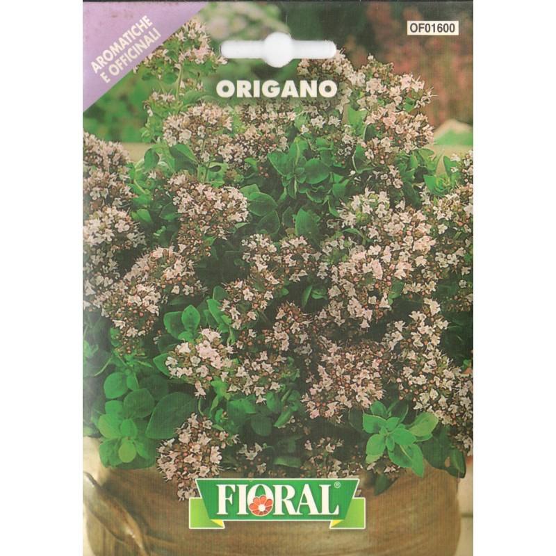 Mercan Köşkü (Origano) Çiçek Tohumu - Paket