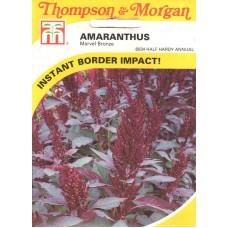 Amaranthus Çiçeği Tohumu - 500 ad - Paket