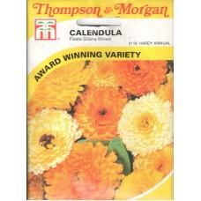 Calendula Çiçeği Tohumu - 160 ad - Paket