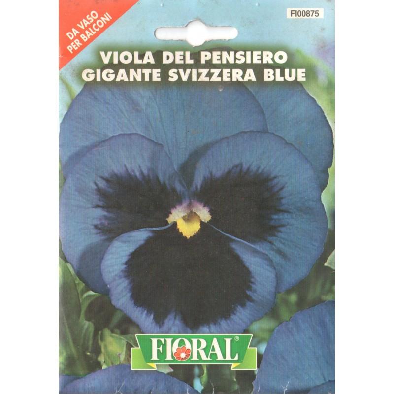 Hercai Menekşe Mavi Çiçek Tohumu - Paket
